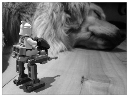 star wars legos cute dogs - 7645961984