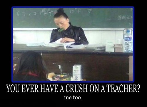 wtf cucumber teachers funny - 7646111488