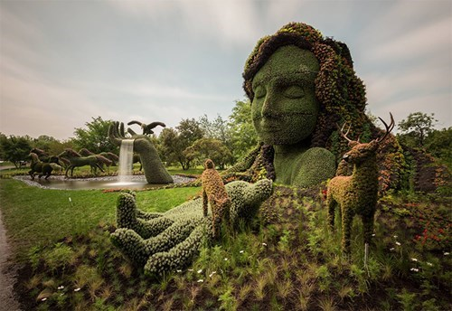 gardening,art,design,funny
