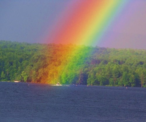 perspective funny rainbow - 7646170880