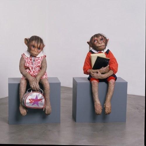 monkeys wtf monster funny - 7646421504