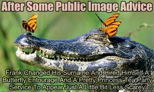 scary alligator funny - 7646841088