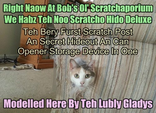 Right Naow At Bob's Ol' Scratchaporium We Habz Teh Noo Scratcho Hido Deluxe Teh Bery Furst Scratch Post An Secret Hideout An Can Opener Storage Device In One Modelled Here By Teh Lubly Gladys