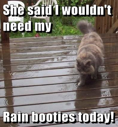 wet weather funny rain lady - 7647381504