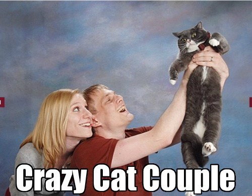 Crazy Cat Couple