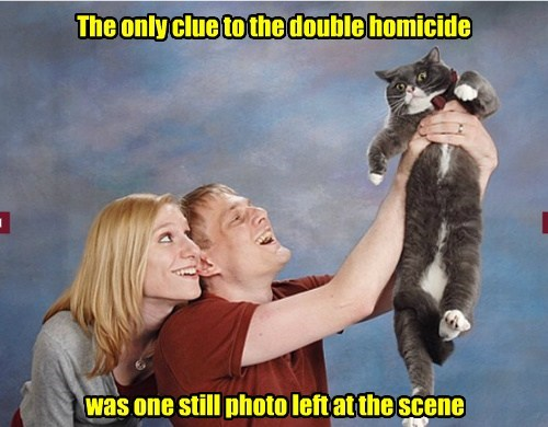 homicide Photo funny - 7648772608