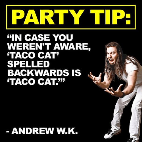 andrew wk,Music,palindromes,funny,taco cat