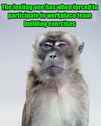 team building,work,ugh,monkey,funny