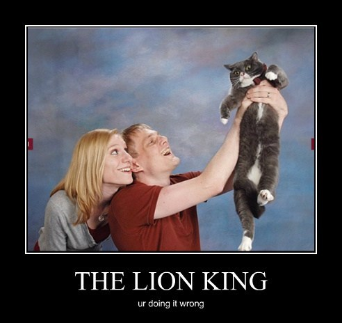 THE LION KING ur doing it wrong