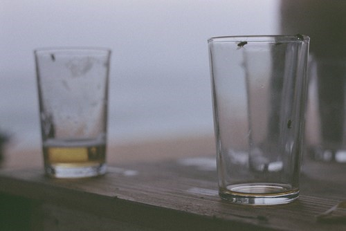 beer wasted empty funny flies