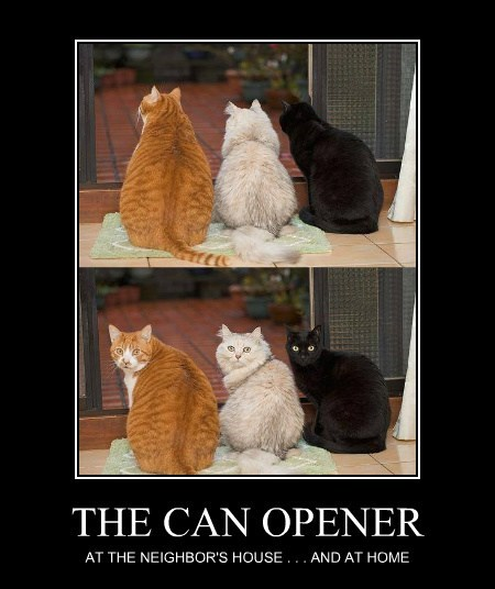 THE CAN OPENER AT THE NEIGHBOR'S HOUSE . . . AND AT HOME