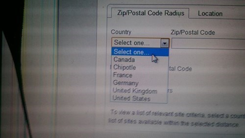 surveys,chipotle,countries