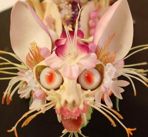 flower monster flowers Cats - 7651779072