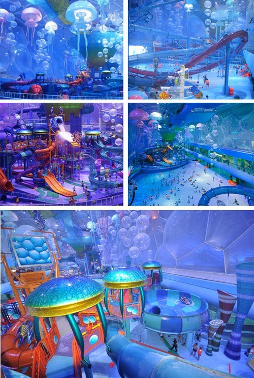 summer design pool water park g rated win - 7652105472