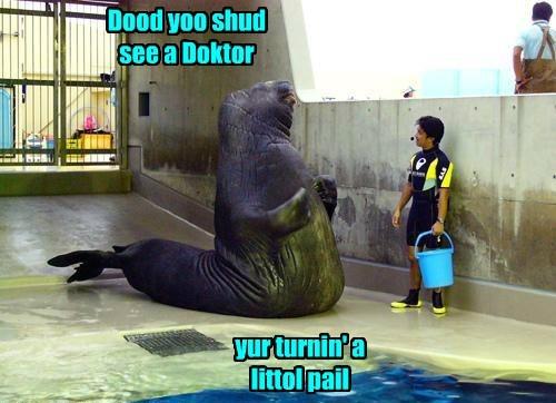arm twisting,blue bukkit,funny,lolrus