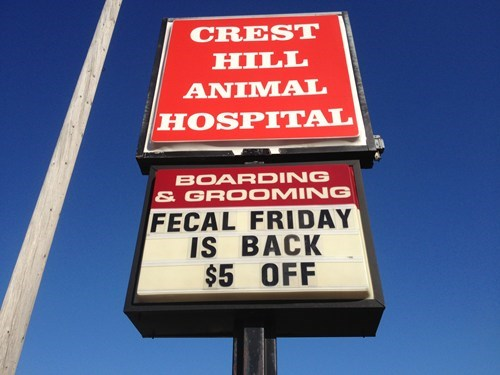 FRIDAY,fecal friday,animal hospital,monday thru friday,g rated
