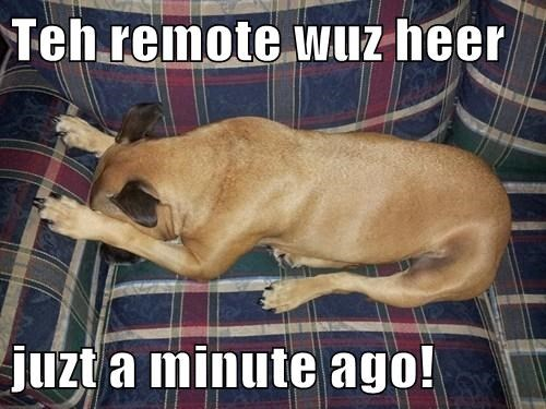 remote,couch,funny