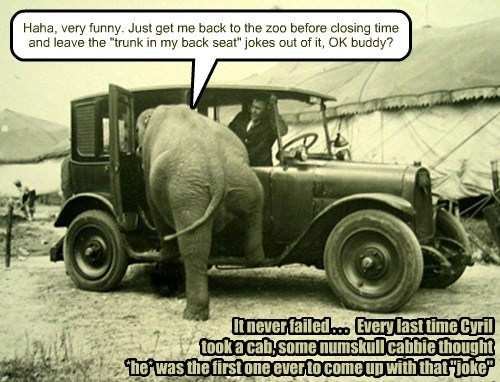 "Haha, very funny. Just get me back to the zoo before closing time and leave the ""trunk in my back seat"" jokes out of it, OK buddy? It never failed . . . Every last time Cyril took a cab, some numskull cabbie thought *he* was the first one ever to come up with that ""joke"""