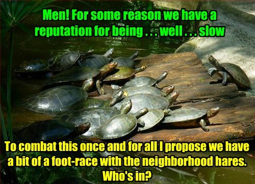 Men! For some reason we have a reputation for being . . . well . . . slow To combat this once and for all I propose we have a bit of a foot-race with the neighborhood hares. Who's in?