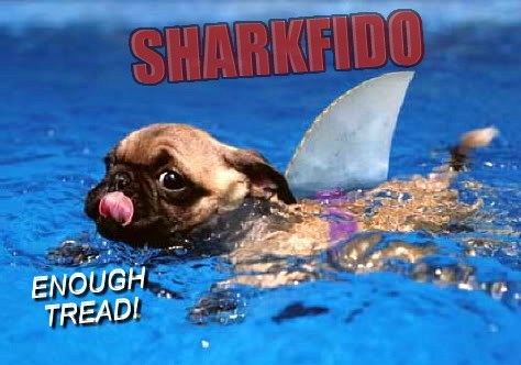 sharknado swimming fin funny - 7656391424