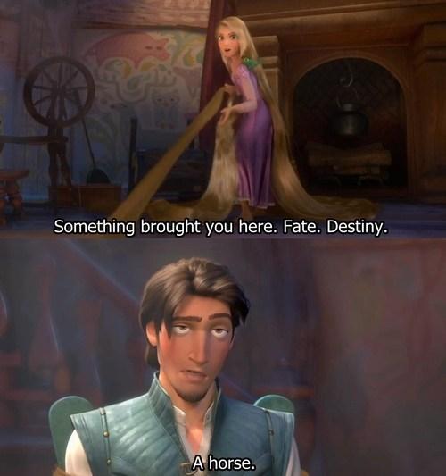 destiny,fate,horses,funny
