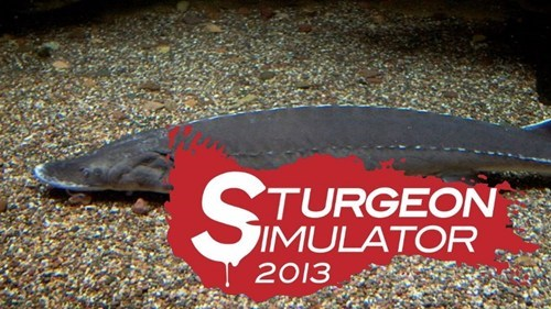 surgeon simulator 2013 fish sturgeon wordplay - 7657482496