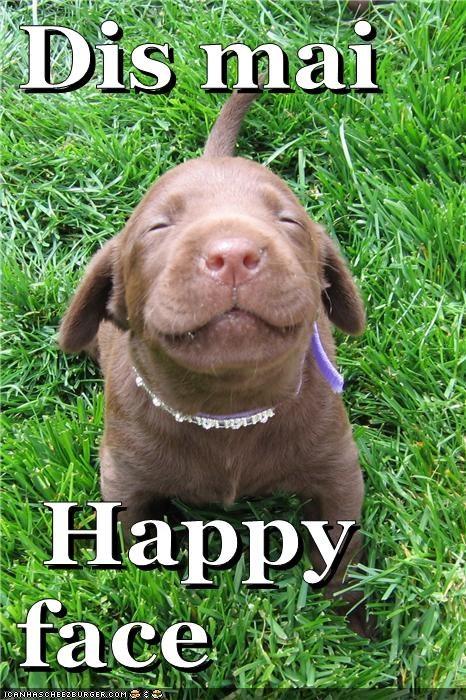 Dis mai   Happy  face
