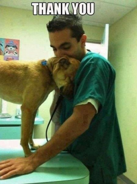 cute grateful vets heartwarming - 7658963968