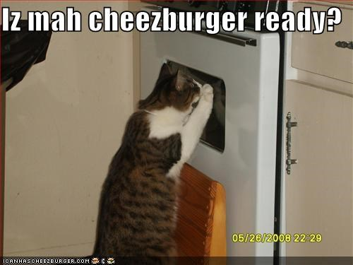 Cheezburger Image 766141696