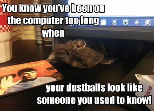 Fluffy dustballs computer funny - 7661631488