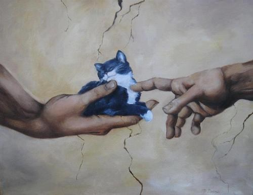 art,The Creation of Adam,painting,funny