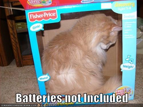 toy batteries funny - 7663649536