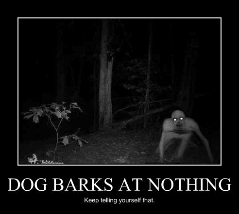scary dogs monster bark nothing funny