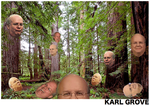 trees,forests,puns,Karl Rove,funny