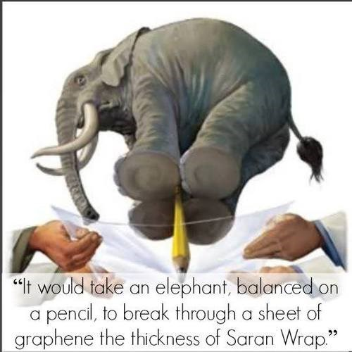 graphene,wtf,elephant,science,funny