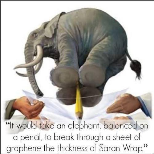 graphene wtf elephant science funny - 7667635456