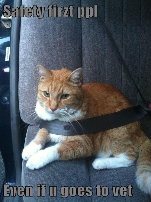 Safety firzt ppl   Even if u goes to vet