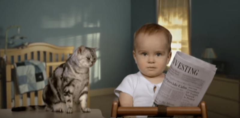 super bowl commercials Cats - 7667717