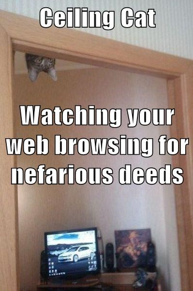 Ceiling Cat Watching your web browsing for nefarious deeds