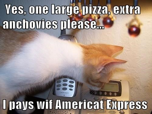 Yes One Large Pizza Extra Anchovies Please I Pays Wif Americat