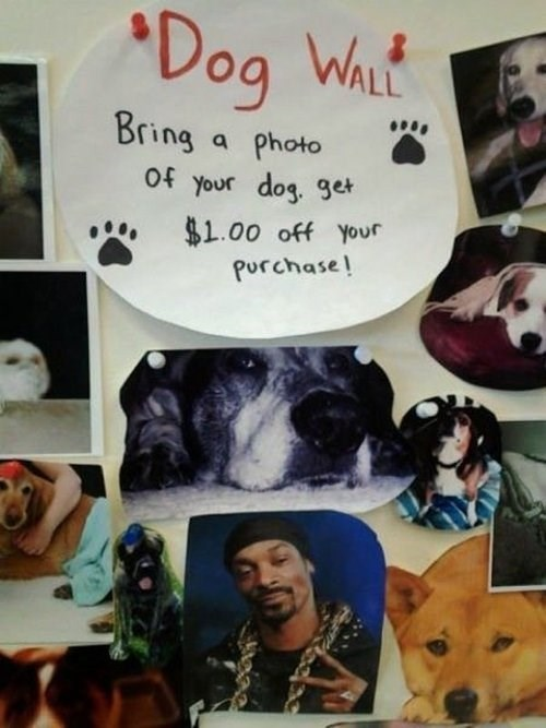 dogg dogs wall