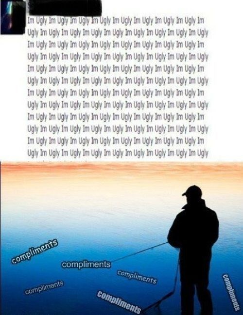 puns facebook fishing for compliments funny - 7670199040