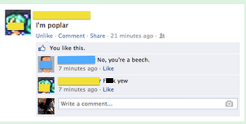 trees,puns,facebook,funny
