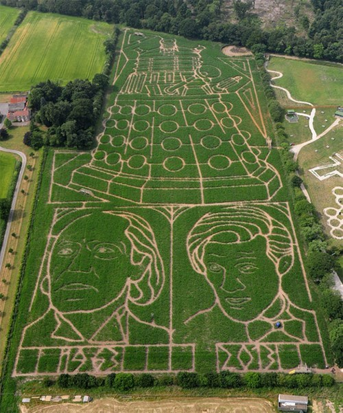 corn maze nerdgasm doctor who funny g rated win - 7670565632
