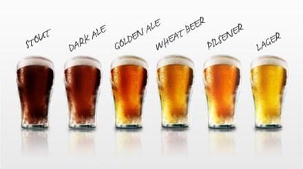 beer styles funny rainbow - 7670749696
