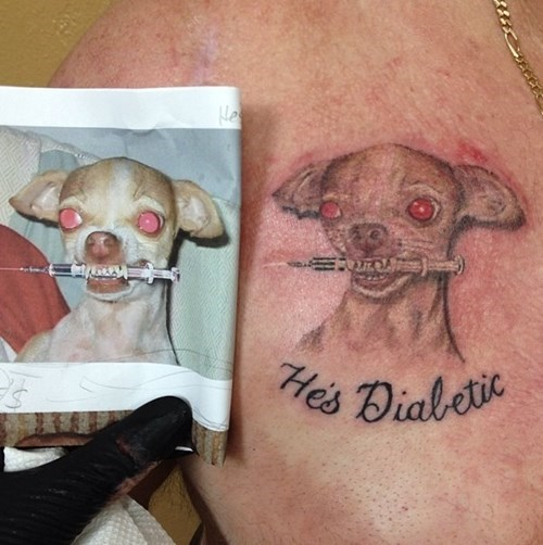 dogs,needles,tattoos,diabetic,funny