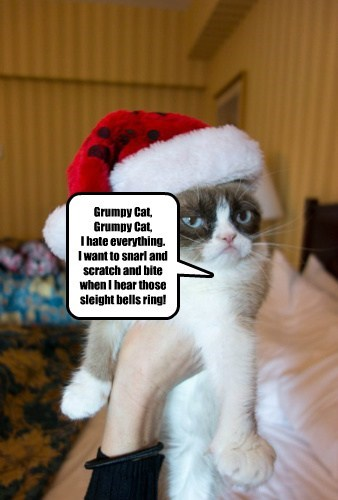 Grumpy Cat, Grumpy Cat, I hate everything. I want to snarl and scratch and bite when I hear those sleight bells ring!