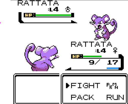 youngster joey Pokémon rattata - 7672088576
