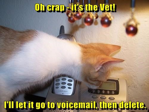delete phone voicemail vet funny