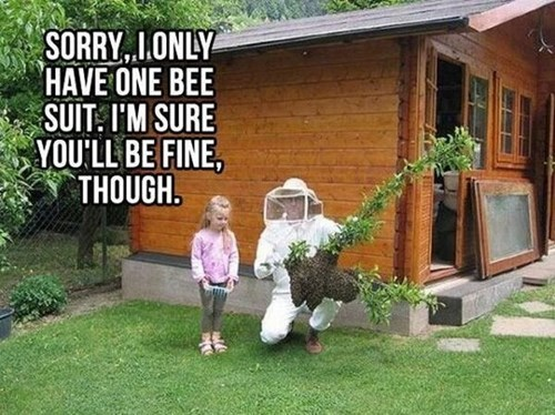 FAIL smart bees suit